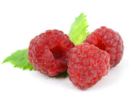 Raspberries in pregnancy diet for first trimester