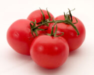 Tomatoes in pregnancy diet for first trimester