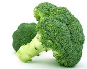 broccoli in pregnancy diet for first trimester