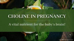 Choline in Pregnancy