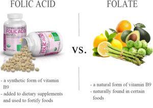 Folate vs. Folic Acid