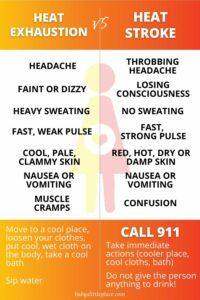 Heat Exhaustion vs. Heatstroke